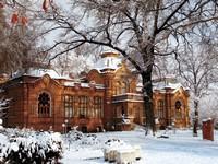 Картинки о ташкенте зимой